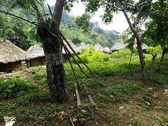 Lost City #Lostcitytrek #Nature #Travellers #Adventures #Welovetravel #Cultures