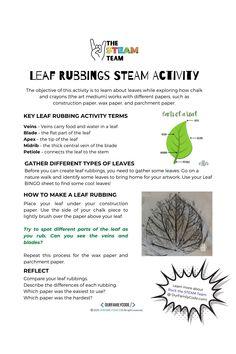 Leaf Rubbings STEAM Activity Rock the STEAM Community Initiative Montessori Classroom Layout, Steam Activities, Chalk Pastels, Construction Paper, Walking In Nature, Summer School, Medium Art, Teacher, Coding
