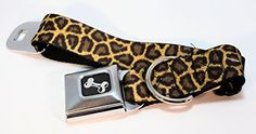 Buckle Down Leopard Print Dog Collars Wide Ribbon Width 15 MEDIUM COLLAR 1623 adjustable * Read more  at the image link.Note:It is affiliate link to Amazon.