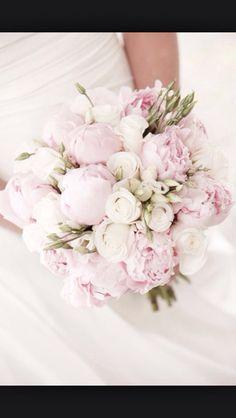 Rosa pioner å vita rosor