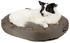 STAINMASTER Plush Oval Pet Bed, Large 42-By-32 Inch, Olive ** Learn more by visiting the image link. #CatsBedsFurniture