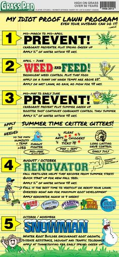 Garden Tips - Grass Pads Idiot Proof Lawn Care Program Now is the time to start looking after the lawn so this summer is beautiful. That's why I'm going to start explaining how to start keeping it. Lawn Care Schedule, Lawn Care Tips, Cheap Fire Pit, Garden Care, Lawn Care Business, Lawn Mowing Business, Business Cards, Lawn Maintenance, Gardens