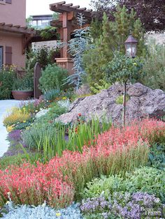 Xeriscaping is just a fancy word for landscaping in a way that requires very little water - it saves money, saves water and looks amazing!