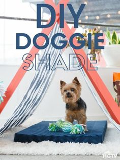 Perfectly Portable Pup Tent for Easy Summer Shade
