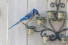 What to do with an old tea light candle holder