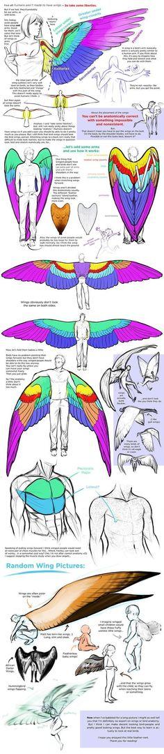 안녕하세요, SBS게임학원 학사멘토 겜선생입니다. 오늘 제가 준비한 자료는 날개 그리기에 대한 자료입...
