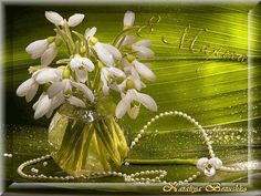 Gif_Paradise: Lily of the Valley