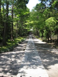 An approach to Jufuku-ji temple, Kamakura