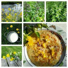 PANNENKOEKEN MET VOORJAARSBLOEMEN Ingrediënten: - meel - melk - eieren - zout - beetje boter of olie - bloemen van bijvoorbeeld witte dovenetel, hondsdraf, koolzaad en bloemblaadjes van de paardebloem. Bereiding: Maak het beslag voor de pannenkoeken. Doe het beslag in de pan en strooi over het nog vloeibare beslag de bloemen. Zorg ervoor dat de bloemen onder het beslag komen zodat ze niet verbranden als je de pannenkoek omdraait. Als de pannenkoek klaar is, kun je er nog wat bloemen over…