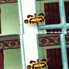 https://nurunnahar.wordpress.com/ #blogger #fiction #art #flower #pink #lifestyle #culture #experience #fashion #islam #hijab #inspire #nature #dragonfly #yellow #bangladesh #hut #colour