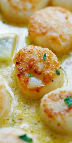 Creamy Garlic Scallops – easiest, creamiest and best scallop recipe ever.- Creamy Garlic Scallops – easiest, creamiest and best scallop recipe ever. Take… Creamy Garlic Scallops – easiest, creamiest and best… - Fish Dishes, Seafood Dishes, Seafood Recipes, Cooking Recipes, Healthy Recipes, Clam Recipes, Delicious Recipes, Cooked Shrimp Recipes, Seafood Platter