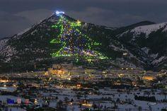 Gubbio albero di Natale sulla montagna