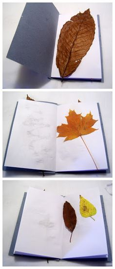 Leaf Collection Book- great combination of outdoor and crafting activitiy