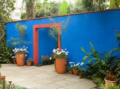 The NYBG will also host a series of events tied to their Kahlo exhibit, including a reading of poems by Nobel Prize-winning Mexican poet Octavio Paz and Mexican cooking classes.A reimagined version of Kahlo's garden at the Casa Azul (Blue House)