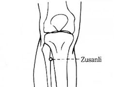 Zu San Li (zoo san lee) is located about three inches below the knee on the outside of the shin bone. Causes Of Depression, Dealing With Depression, Point Acupuncture, Emotional Disorders, Grief Counseling, Feeling Unwanted, Heart Palpitations, The Shins, How To Treat Anxiety