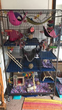 my rats room is nicer than mine Best Picture For beautiful Mammals For Your Taste … Rat Cage Diy, Pet Rat Cages, Ferret Cage, Pet Ferret, Guinea Pig Toys, Guinea Pigs, Rat Cage Accessories, Rare Animals, Strange Animals
