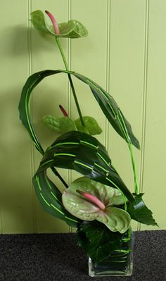 Aspidistra leaf manipulation with midollino sticks