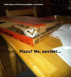 Pizzu? :-D