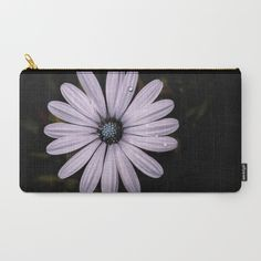 Buy Daisy Mauve Carry-All Pouch by xiari_photo. Worldwide shipping available at Society6.com. Just one of millions of high quality products available. #daisy, #mauve, #purple, #white, #violet, #indigo, #drop, #water, #flower, #nature, #natural, #garden, #outdoor, #backyard, #black, #background, #petals #bloom, #spring, #season, #happy, #central, #blue, #flowers, #head, #wet, #photo, #photography, #nikon, #dslr #pouch