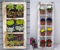 idées déco jardin - jardin vertical à base de cadre de vieille fenêtre en tant que décoration originale