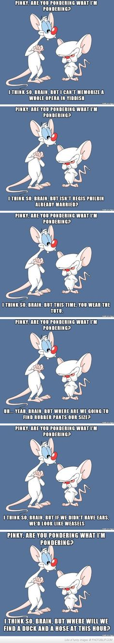 LOVE LOVE LOVE Pinky And The Brain, notice in the opening song they never say which one's insane?