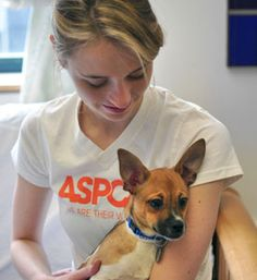ASPCA ways to help animals