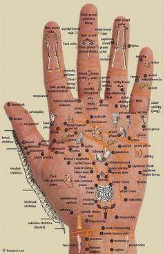 Někdy má člověk pocit, jako by měl celý svět na dlani. Může to vyznít trochu povzneseně, ale dá se říct, že sami sebe v té dlani opravdu máte. Konkrétně body, které se na ní nacházejí, dokáží totiž zmírnit bolesti v jiných částech těla.