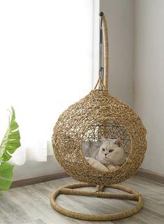 Swing Rattan Weaving Cushion Home Decor Summer Pet Bed For Small Medium Cats Animal Room, Diy Pet, Cat House Diy, Cat Hammock, Cat Condo, Cat Room, Cat Decor, Pet Furniture, Pet Beds