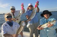 Miami Inshore Fishing Charter Experience and explore the inshore flats fishing in gorgeous Biscayne Bay in downtown Miami! Just minutes from downtown Miami, FL. View its beautiful blue water, while experiencing the thrill of a chance to catch sea trout, snapper, snook, mackerel, grouper, jack crevelle, ladyfish and bluefish all while viewing Miami Heat arena. Many fishing enthusiast want a good meal to take home and this is a great location for Sea Trout one of the best fish...