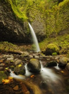 Enchanted Chamber by davidrichterphoto (Ponytail Falls, Columbia River Gorge, Oregon)