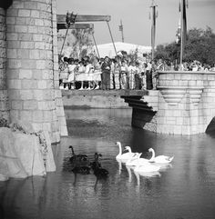 July 1955 Children cross over a moat into the castle at Disneyland. Image: Allan Grant/The LIFE Picture Collection/Getty Images Disneyland's grand opening was actually pretty disastrous Disneyland Opening Day, Disneyland Park, Sleeping Beauty Castle, California History, Vintage Disneyland, Walt Disney Company, Life Pictures, Picture Collection, Grand Opening