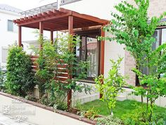 木製パーゴラ テラス屋根 アイアンウッド Pergola Patio, Sunroom, Canopy, Facade, Entrance, Porch, New Homes, Outdoor Structures, House