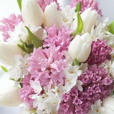 Hyacinths, tulips, daffodils