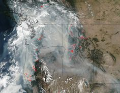 Wildfire smoke and health: 5 questions answered Nasa Images, Columbia River Gorge, Dry Leaf, Indian Creek, Eagle Creek, Question And Answer, Climate Action, Northern California, British Columbia