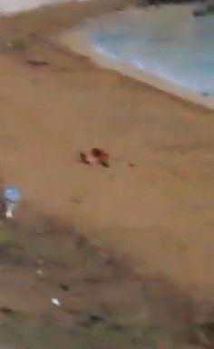 Sesso orale praticato sotto gli occhi dei passanti in una spiaggia del centro di Lecce all'alba. E' l'ultima perla che il comitato cittadino di Gallipoli che si batte per il decoro ha raccolto nell'album degli orrori dei turisti che hanno invaso la cittadina pugliese, immortalati mentre urinano o vo