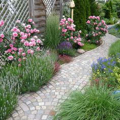 Garden Styles, Pathways, Beautiful Gardens, Flower Arrangements, Sidewalk, Home And Garden, Backyard, Flowers, Plants