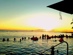 プールからのサンセットを楽しむ人々 Sheraton Waikiki, Surf Girls, Opera House, Surfing, Building, Travel, Viajes, Buildings, Surf