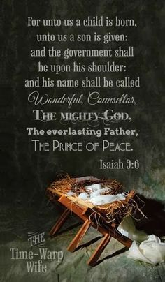 Sweet Magnolias Farm: The Gift in the Manger ....
