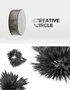 Creative Circle Identity by Make