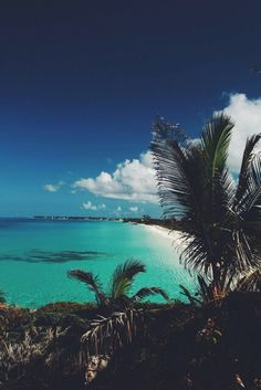 Palm trees and the ocean Strand Wallpaper, Beach Wallpaper, Paradise Wallpaper, Photography Beach, Travel Photography, Iphone Photography, Places To Travel, Places To See, Travel Destinations