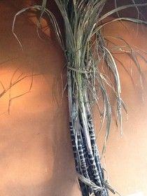 Le e Lu on the eat: - Qualche piatto in Auroville e dintorni..sugar cane