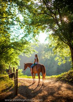 Horseback ride in the setting sun, ah, the country life. Pretty Horses, Beautiful Horses, Animals Beautiful, Bareback Riding, Horse Riding, Trail Riding, Horse Photos, Horse Pictures, Horse Girl