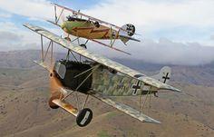 Fokker D.VIII and a Albatros D.V
