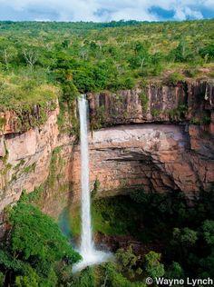 Wayne Lynch - The Pantanal - Brazil's Wildlife Paradise - Waterfall