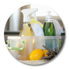 Clean Green! Ingredients for All-purpose Cleaner, Glass Cleaner, Furniture Polish, Dishwasher Soap, and Laundry Soap