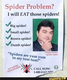 Ladies, do you have a spider problem in your home? Do not despair! Glenn Funtz, a professional spider eater, can clear up your spider problem in no time! 9gag Funny, Haha Funny, Memes Humor, Humor Humour, Funny Humor, Stupid Funny Memes, Funny Shit, Funny Stuff, Baguio