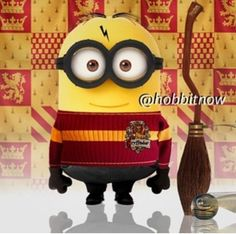 Harry Potter.... I don't know if Chrissy Phillips likes Harry Potter but I thought of her when I saw this!!