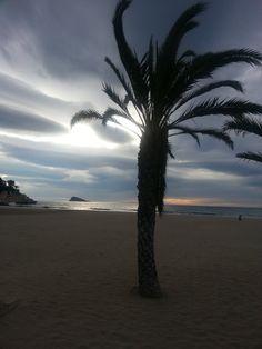 Nubes y palmera