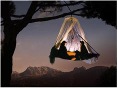 Tree camping, pfronten-kappel, germany