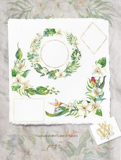 Aquarelle Fleur Tropicale Frontiere Clip Art Clipart Bouquets